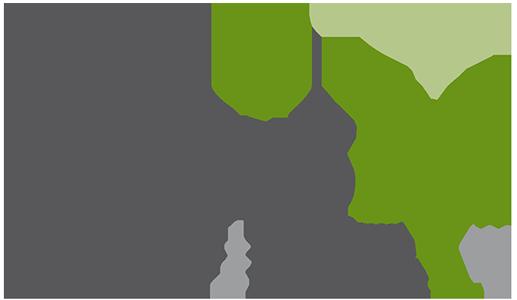 Basis M